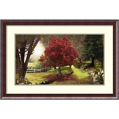 Amanti Art Framed Art Print Inner Sanctuary Tree by David M Maclean 37 x 25H, Frame Walnut  (DSW3909471)