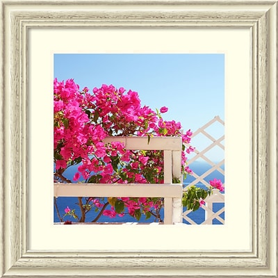 Amanti Art Framed Art Print Santorini Blooms (Floral) by Sylvia Coomes 26W x 26H, Frame White (DSW3909525)