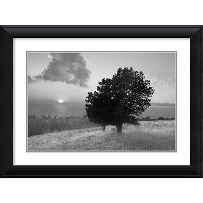 Amanti Art Framed Art Print Spitler Knoll Overlook by Winthrope Hiers 33 x 25H, Frame Black (DSW3909561)