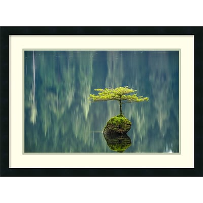 Amanti Art Framed Art Print Fairy Lake Bonsai by Tim Oldford  31 x 23H, Frame Satin Black (DSW3909562)