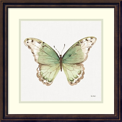 Amanti Art Framed Art Print Colorful Breeze XII (Butterfly) by Lisa Audit 18W x 18H, Dark Bronze (DSW3909589)
