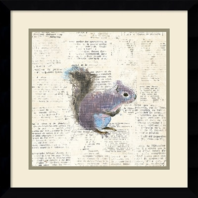 Amanti Art Framed Art Print Into the Woods V no Border (Squirrel) by Emily Adams17W x 17H Frame Satin Black (DSW3909692)