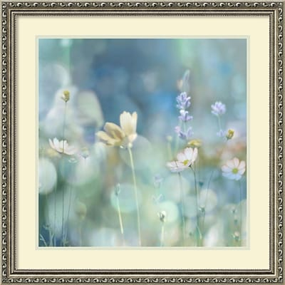 Amanti Art Framed Art Print Morning Meadow II (Floral) by Kate Carrigan 27W x 27H, Frame Silver (DSW3910582)