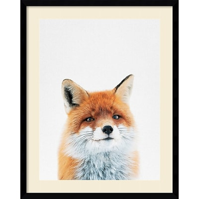 Amanti Art Framed Art Print Fox by Tai Prints 23W x 29H Frame Satin Black (DSW3926508)