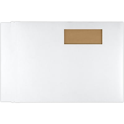 LUX 9 1/2 x 12 1/2 Window Paperboard Mailers 500/Pack, White (84477WIN-500)