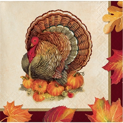 Creative Converting Turkey Traditions Thanksgiving Beverage Napkins, 5 x 5, 16 pack (324015)