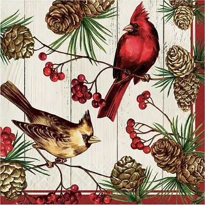 Creative Converting Winter Cardinal Napkins, 6.5 x 6.5, 16 pack (324175)
