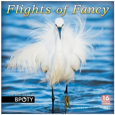 2018 Sellers Publishing, Inc. 12 x 12 Flights Of Fancy: The Best Birds Of BPOTY Wall Calendar (CA0179)