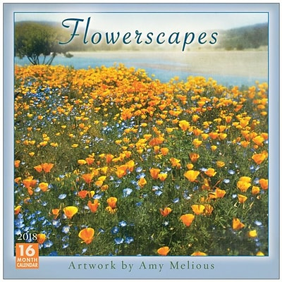 2018 Sellers Publishing, Inc. 12 x 12 Flowerscapes - Artwork By Amy Melious Wall Calendar (CA0167)