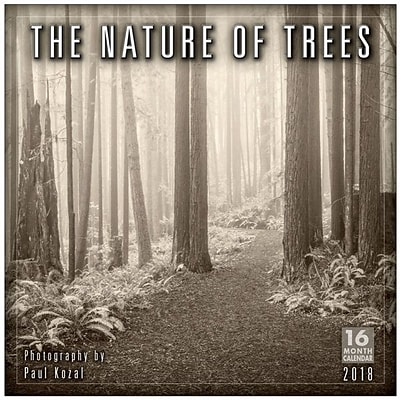 2018 Sellers Publishing, Inc. 12 x 12 Nature Of Trees, The - Photography By Paul Kozal Wall Calendar (CA0148)