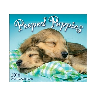 2018 Sellers Publishing, Inc. 5 x 6 Pooped Puppies Boxed Daily Calendar (CB0258)