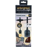 Enbrighten Cafe 35880 Café Colored Lenses, 6 pk (Amber)