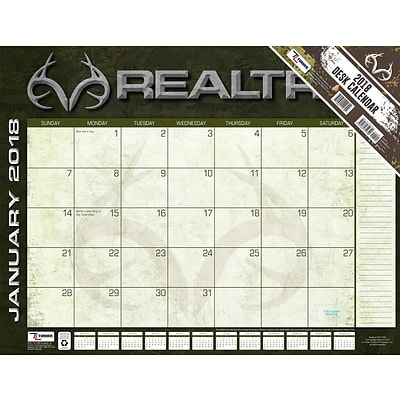 Realtree Hidden Hunter 2018 22X17 Desk Calendar (18998061563)