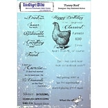 IndigoBlu Funny Bird Cling Mounted Stamp, 8 X 5.5 (IND0156P)