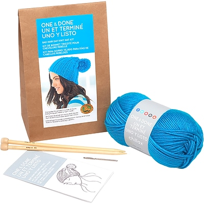 Lion Brand Bad Hair Day Knit Hat One & Done Yarn Kit (606-148)