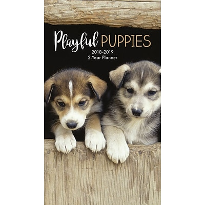 2018 Turner Photographic 3-1/2 x 6-3/8, Playful Puppies Two Year Planner (18998960013)
