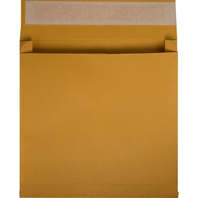 LUX 10 x 15 x 2 Booklet Expansion Envelopes 250/Pack, 40 lb. Brown Kraft (EXP10152B40BK25)
