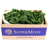 Supermoss Forest Preserved Reindeer Moss, 3 lb (RM3LB-21710)
