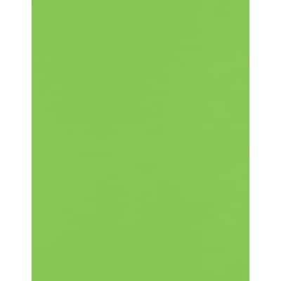 LUX 8 1/2 x 11 Cardstock 50/Pack, Limelight (81211-C-199-50)