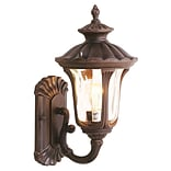 Livex Lighting 1-Light Imperial Bronze with Light Amber Water Glass Outdoor Wall Lantern (7650-58)