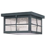 Livex Lighting 3-Light Hammered Charcoal Finish Outdoor Mount with Seeded Glass (2689-61)