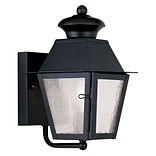 Livex Lighting 1-Light Black Outdoor Wall Lantern with Seeded Glass (2160-04)