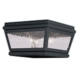 Livex Lighting 2-Light Charcoal Outdoor Mount with Clear Water Glass (2611-04)
