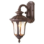 Livex Lighting 1-Light Imperial Bronze with Light Amber Water Glass Outdoor Wall Lantern (7651-58)