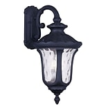 Livex Lighting 3-Light Black Outdoor Wall Lantern with Clear Water Glass (7863-04)