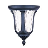 Livex Lighting 2-Light Black Outdoor Mount with Clear Water Glass (7861-04)