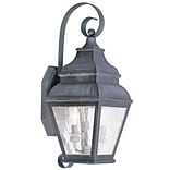 Livex Lighting 2-Light Charcoal Outdoor Wall Lantern with Clear Water Glass (2602-61)
