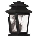 Livex Lighting 1-Light Black Outdoor Wall Mount Lantern (20255-04)