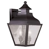 Livex Lighting 2-Light Bronze Outdoor Wall Lantern with Seeded Glass (2451-07)