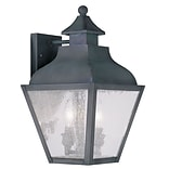 Livex Lighting 2-Light Charcoal Outdoor Wall Lantern with Seeded Glass (2451-61)