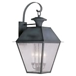 Livex Lighting 4-Light Charcoal Outdoor Wall Lantern with Seeded Glass (2172-61)