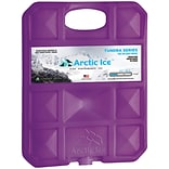 Arctic Ice 1205 Tundra Series Freezer Pack, 2.5 lbs. (ARCT1205DS)