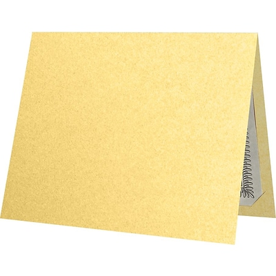 LUX 9-1/2 x 12 Certificate Holders, Gold Metallic, 50/Pack (CH91212-M07-50)