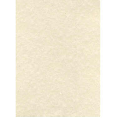 Canson Classic Cream Drawing Paper Sheets 18 in. x 24 in. [Pack of 10](PK10-100511131)