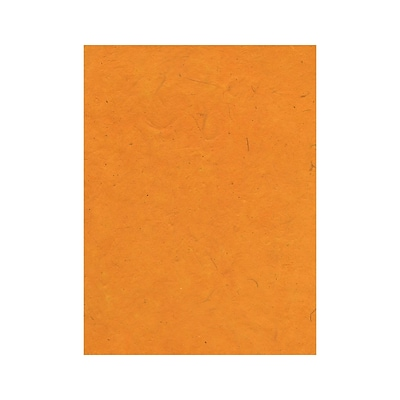 Graeham Owens Lokta Paper buttercup 20 in. x 30 in. 20 g [Pack of 10](PK10-GO-LTBCP)