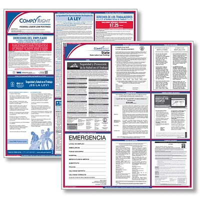 ComplyRight™ Federal & State Labor Law Poster Kit, Florida, Spanish