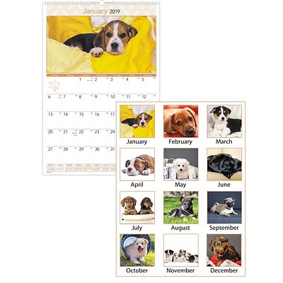 2019 AT-A-GLANCE® Puppies Monthly Wall Calendar, 12 Months, January Start, 15 1/2 x 22 3/4 (DMW167-28-19)