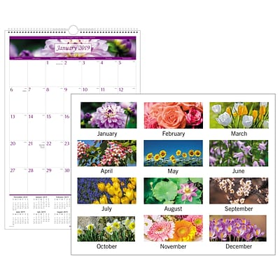2019 AT-A-GLANCE® Floral Monthly Wall Calendar, 12 Months, January Start, 15 1/2 x 22 3/4 (PM44-28-19)