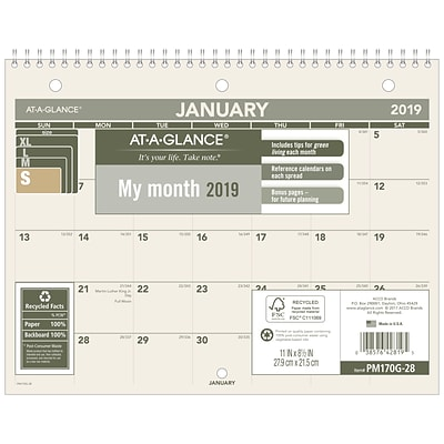 2019 AT-A-GLANCE® Recycled Monthly Desk/Wall Calendar, 12 Months, January Start, 8 1/2 x 11 (PM170G-28-19)