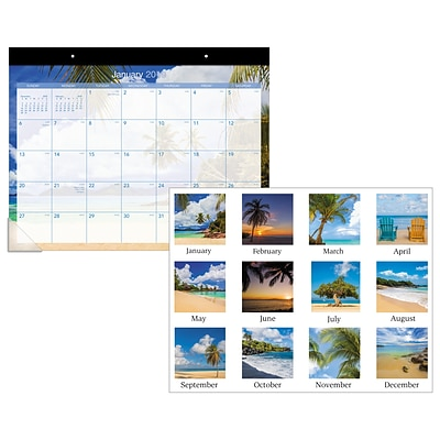 2019 AT-A-GLANCE® Tropical Escape Desk Pad, 12 Months, January Start, 22 x 17 (DMDTE2-32-19)