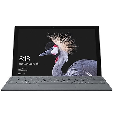 Microsoft® Surface Pro 12.3 Tablet with LTE Advanced, (GWM00001), 8GB RAM, 256GB SSD, Windows 10 Pro, Silver