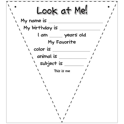 Top Notch Teacher Products® Look at Me Pennant Flags, Pack of 108 (TOP3066)