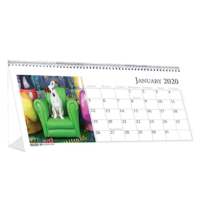 House of Doolittle 2019 Monthly Desktop Tent Calendar Earthscapes Puppies 8.5 x 4.5  (HOD3659)