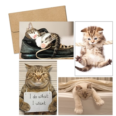 Masterpiece Studios Great Papers!® Kitty Thoughts Assortment Note Card, 4.875H x 3.35W (folded), 20 count (2017059)