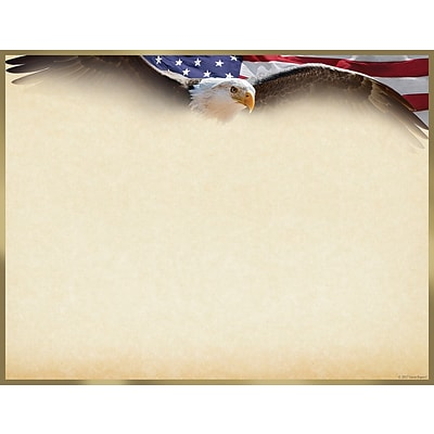 Masterpiece Studios Great Papers!® Flying Eagle with Gold Foil Certificate, 8.5H x 11W, 15 count (2017042)