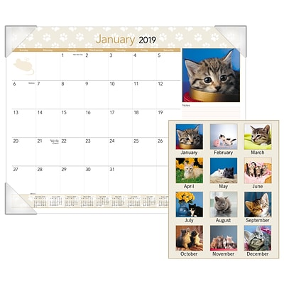 AT-A-GLANCE® Kittens Monthly Desk Pad, 12 Months, January Start, 22 x 17 (DMD167-32-19)